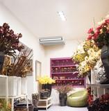 Les solutions de climatisations Mitshubishi pour les commerces